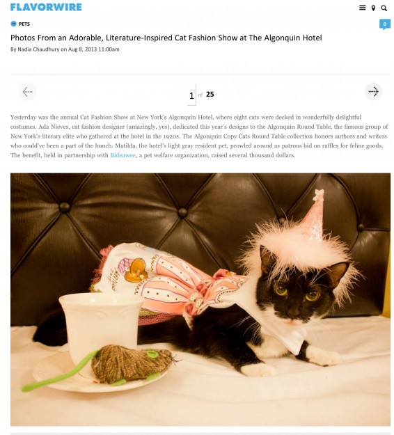 Flavorwire: Photos From an Adorable, Literature-Inspired Cat Fashion Show at the Algonquin Hotel