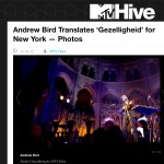 MTV Hive: Andrew Bird Translates 'Gezelligheid' for New York