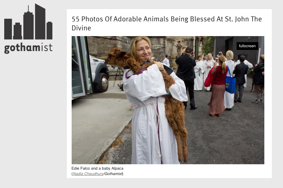 Gothamist: 55 Photos of Adorable Animals Being Blessed at St. John the Divine